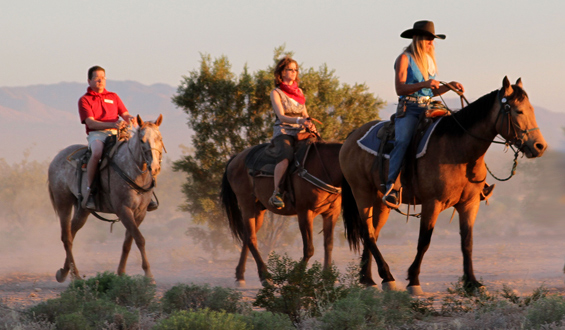 A group of three people on a horseback ride during sunset